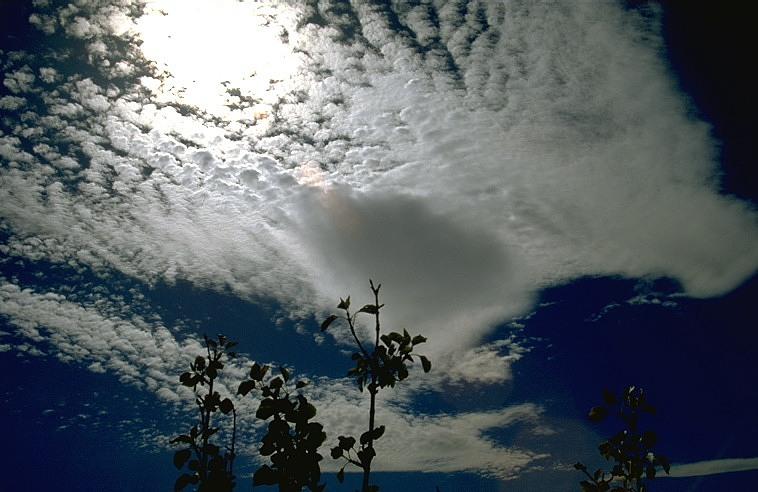 Wolke (Quelle: Karlsruher Wolkenatlas)